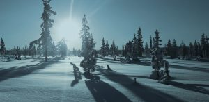 Dog Sledding Lapland under fantastic winter landscapes